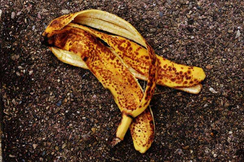 banana-peel-homemade-fertilizers