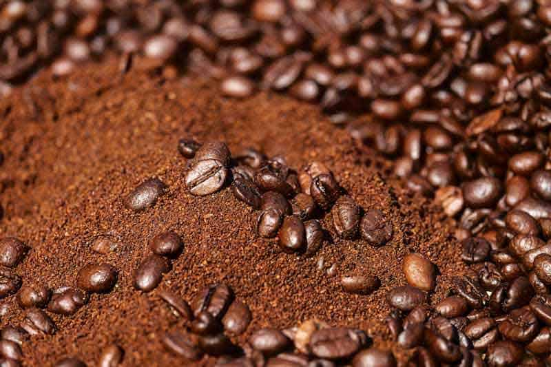 coffee-beans-homemade-fertilizers